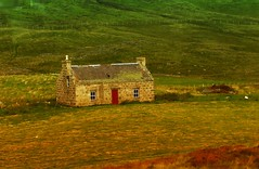 Highlands (Steffi-Helene) Tags: schottland highlands naturellement lovelynature naturpur europe travelling grosbritannien wiesen weideland outdoor mountains montagne htte alm landscape paysage