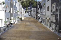 Entornada. (elojeador) Tags: pasillo calle cementerio cementeriodemacael macael mrmol lpida nicho adoqun flor ramo tapia notienellave elojeador