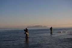 surf alcatraz