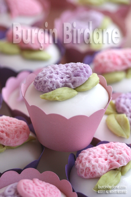 Y-Cupcake 2