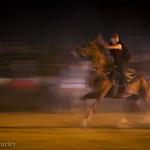 Desert horseman, Morocco
