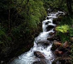 Fresh water (Val deth Toran - Val d'Aran - Lleida - Spain)