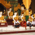 "Men Sitting with Buddhas at Shwedagon Paya <a style=""margin-left:10px; font-size:0.8em;"" href=""http://www.flickr.com/photos/14315427@N00/6920968968/"" target=""_blank"">@flickr</a>"