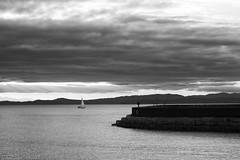 It's Love! (Northern Straits Photo) Tags: blackandwhite sailboat sailing britishcolumbia victoria storms hollandpark ogdenpoint ireenaworthy northernstraitsphotography
