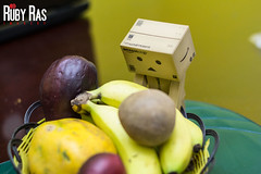 Day 172 (Ruby Ras) Tags: canon project days jamaica day172 danbo 366 60d danboard 3662012
