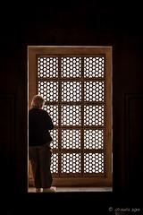 At the Window 2202 (Ursula in Aus) Tags: india architecture taj tajmahal unesco uttarpradesh earthasia