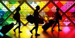 travellers (M@x Ph) Tags: travel people color colors silhouette backlight airport colore miami streetphotography aeroporto backlit bags colori viaggio controluce borse viaggiatori