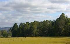 815 Western Creek Road, Dairy Plains TAS