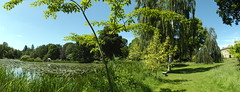 by the lake (rospix) Tags: uk blue trees sky panorama lake green nature june wales landscape countryside 2014 rospix