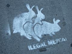 Illegal Mezcal, New York, NY (Robby Virus) Tags: newyork newyorkcity ny nyc bigapple city manhattan rabbits bunnies sleep sketch illegal mezcal