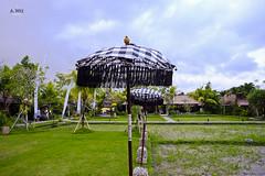 Beside the paddy fields (A. Wee) Tags: ubud bali  indonesia  bebek tepisawah restaurant
