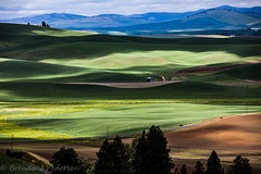 In between the daylight hours (Culinary Fool) Tags: palouse usa washington grainelevator kamiakbutte 2016 green rollinghills 70200mm28 shadows palousescenicbyway culinaryfool roadtrip brendajpederson travel silo photography fields hills farm ranch may wa travelwa