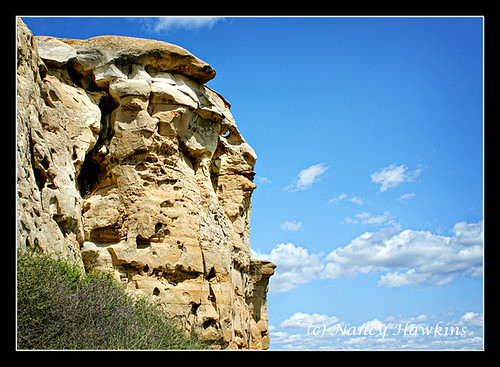 Face in Stone by Nancy Hawkins