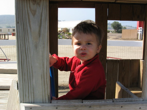 2-year-old Ezra at the Farm