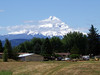 Mount Hood (Glenn Harris (Clintriter)) Tags: blue trees houses sky mountain snow field clouds oregon buildings vehicles covered mthood vista columbiagorge mounthood hoodriver spiritofphotography