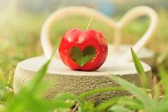 (Pa Ramos) Tags: red white verde green love branco fruit garden heart amor vermelho fruta grama havaianas jardim corao chinelo pitanga nikond5000