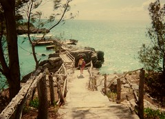 (katieohh) Tags: film nature harbor dock paradise allie bermuda pathway disposable