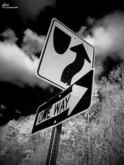 One Way Papuntang Heaven