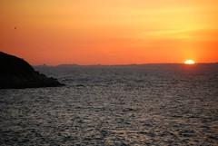 Atardecer (María Taboada) Tags: sunset sea orange sun sol mar rocks seagull puestadesol naranja gaviota rocas