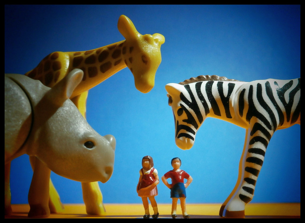 The World S Best Photos Of Giraffe And Playmobil Flickr