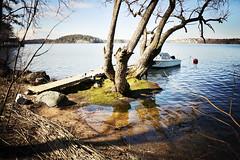 Down the water (Fredrik Forsberg) Tags: snow spring melting sweden stockholm vår hägersten mälarhöjden panasoniclumixg14mmf25asph panasonicgx1