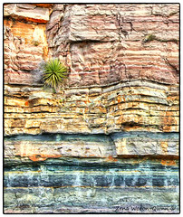 Layers (ZWQphotos) Tags: rock sandstone texas granite layers geology hillcountry yucca kingsland