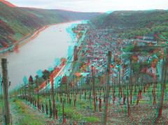 Vineyards above Oberwesel-on-Rhine (katyfernleigh) Tags: 3d stereo anaglyph spm sdmsync ixus70 twincamera heimat