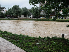 P1080492 (Stefan Teodosić) Tags: nature water rain flood floods catastrophy poplava poplave destaster