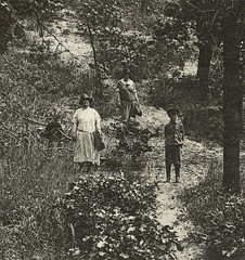 On the way to the dunes near Dune Park, Indiana, section (Hoosier Recollections) Tags: people woman usa history boys kids children clothing women hats parks indiana pedestrians dunepark realphoto portercounty hoosierrecollections