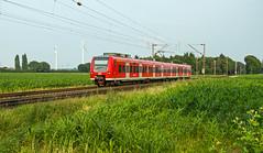 Haldern DB 425 536 als RB35 naar Emmerich (Rob Dammers) Tags: train germany zug db bahn oberhausen deutsche emmerich
