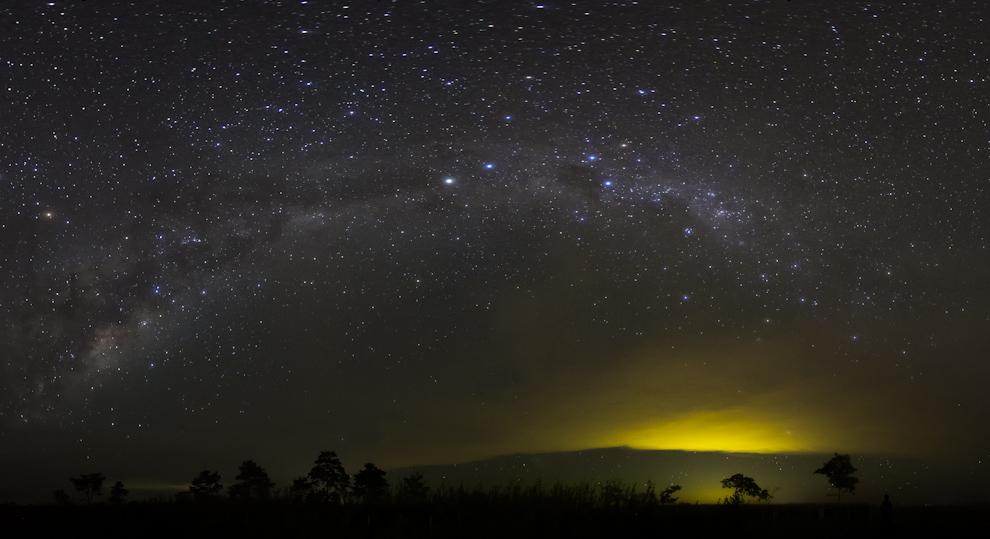 En la ciudad de Volendam pudimos observar una noche estrellada imponente con este árbol de testigo. (Tetsu Espósito - Volendam, Paraguay)
