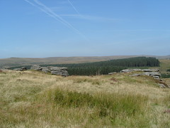 S1051749 (AppleJays) Tags: england nationalpark hills devon fields moors dartmoor moorland aonb tors