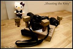 Shooting the Kitty (Danbo & Co) (Lisa Tiffany Photography) Tags: anime japanese robot nikon box cardboard artisticphotography miura yotsuba danbo hardworking toyphotography creativephotography revoltech hayasaka danboard   d7000 mygearandme readyforhercloseupmrdanbo neverabreak danbotakingaphoto