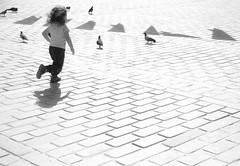Bird chasing (Maríon) Tags: street travel bw white black turkey nikon istanbul marion reise tyrkia supermarion nesje d7000 marionnesje