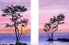 alberi 18