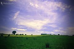 Mre nature - La fe Pix'elle (La fe Pix'elle) Tags: ciel nuages campagne champ foin lafeepixelle