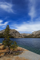 Tenaya Lake - 28 (www.bazpics.com) Tags: california road park ca cliff usa mountain lake america sunrise point landscape us scenery unitedstates pass scenic parks el glacier mount national yosemite dome half granite service landschaft ynp sentinel capitan tioga tenaya barryoneilphotography