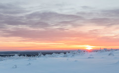 Lappland - Laponie ( Mathieu Pierre photography) Tags: lappland laponie finnland lapland snow north night sky light silence nature landscape northern polar circle sunlight