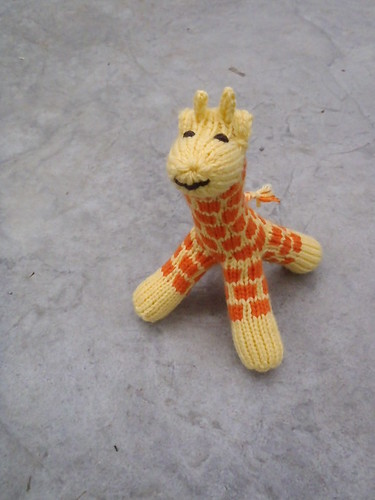 Tiny Giraffe front view