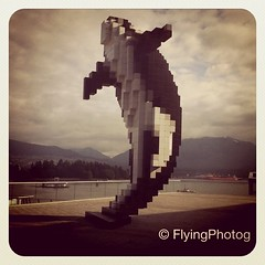Digital Orca (Flying Photog) Tags: sculpture art vancouver square squareformat douglascoupland earlybird iphoneography digitalorca instagramapp uploaded:by=instagram foursquare:venue=4aaefa42f964a520dd6320e3