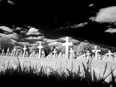 CimiAmeric_Epinal2011_IR_6039231bn_1 (stegdino) Tags: cemetery ir military ground infrared thumbsup cimitero bigmomma gamewinner epinal challengeyouwinner beginnerdigitalphotographychallengewinner yourockwinner herowinner storybookwinner ispywinner pinnacle20120922