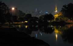 [2006] Ibirapuera (Diego3336) Tags: park trees light brazil urban lake reflection building tree tower latinamerica southamerica water brasil skyline night skyscraper buildings reflections pond lowlight skyscrapers nightshot saopaulo lagoon clear urbannature ibirapuera antenna clicksp