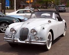 Jaguar XK 120 (jag9889) Tags: show classic 120 sports car newjersey automobile antique nj exhibition madison transportation vehicle motor jaguar dealership 2012 roadster xk morriscounty xk120 jag9889 y2012