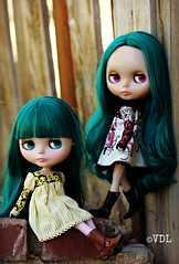 Blythe a day 20 ~ Friendship (Voodoolady ) Tags: friends hair day factory dress friendship teal best fantasy pam translucent blythe mold tiffany et eurotrash bff princessalamode fishkness copyalexisemerald blytheadayapril