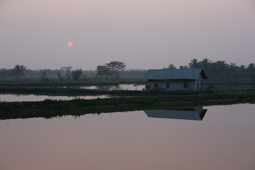 Fading light over pond aquaculture, Khulna, Bangladesh. Photo by Mike Lusmore/Duckrabbit, 2012.