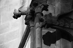 a gargouille (Kimoufli) Tags: arlon glise gargouille church statue noiretblanc monochrome blackandwhite saintmartin
