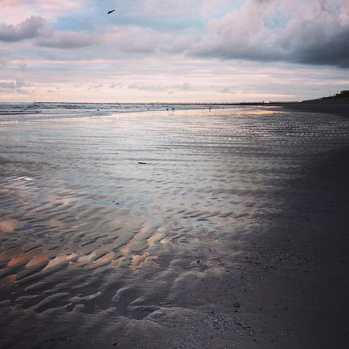 Guten Morgen von der Insel #wangerooge #nordsee #ostfriesland