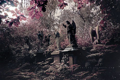 Life, Death and Other Morbid Tales (Midnight - Digital) Tags: wood london cemetery graveyard statue angel death gothic spooky mysterious inri tombs abneypark