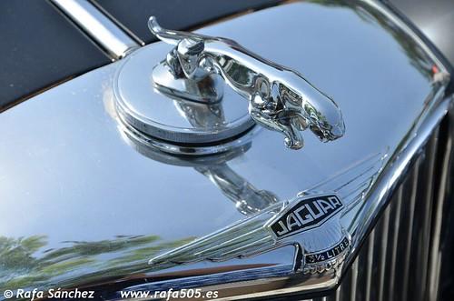 Jaguar 3 1/2 L.