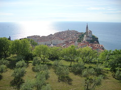 Piran, Slovenia (darth_sweder) Tags: slovenia slovenija europe eu europeanunion piran pirano overview sight sun blistering oldtown historic center centre medieval ocean sea adriatic istria slovenian catholic church tartinisquare headland promontory cape gulfofpiran piranskizaliv piranskizaljev savudrijskavala baiadipirano bay primorska pictureperfect